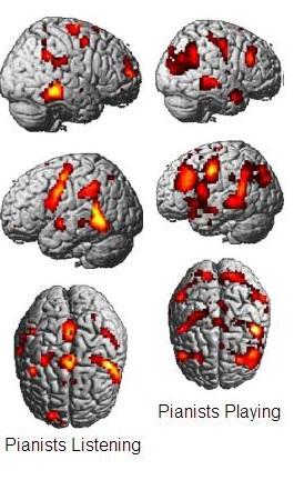 mirror-neurons-1